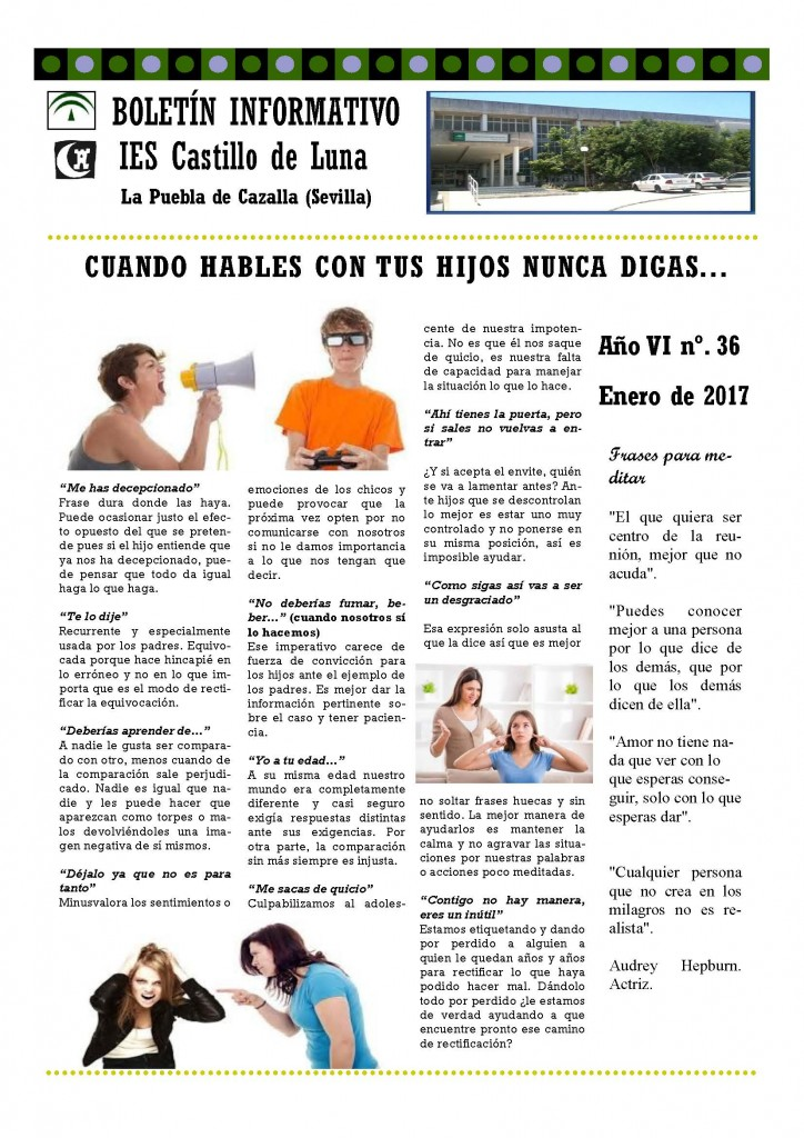 Portada Boletín nº 36 (enero 17)