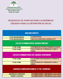 REQUISITOS ACADÉMICOS BECAS
