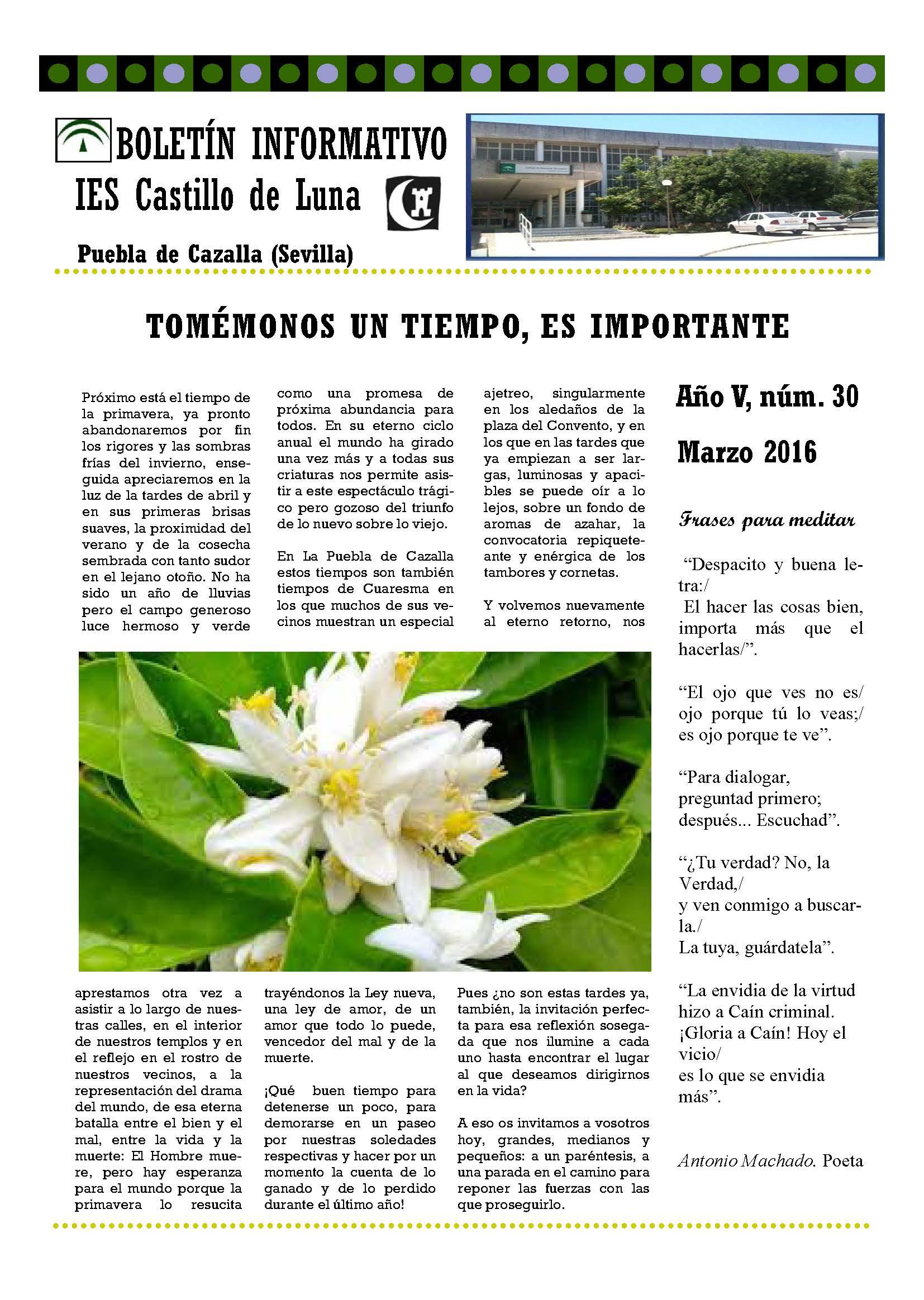 Páginas desdeBoletín nº 30